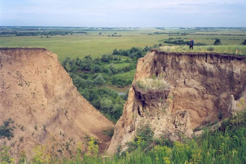 Gully erosion is evidence of landscape destruction in the agricultural steppes of Southern Siberia