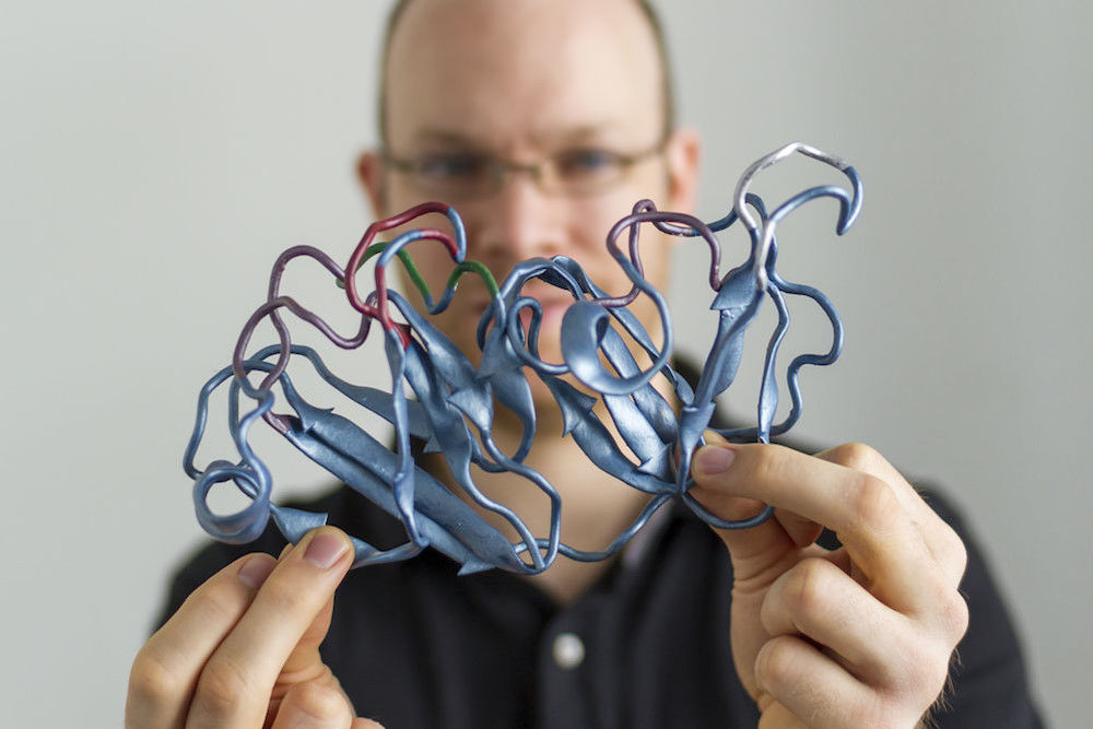 "Dominik Schneider has ""his"" protein printed at 200 million times its original size (photo: Melanie Zimmermann)"