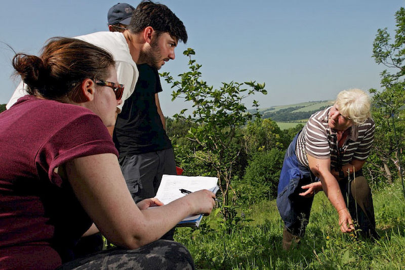 Monika Partzsch and the students conducting field work.