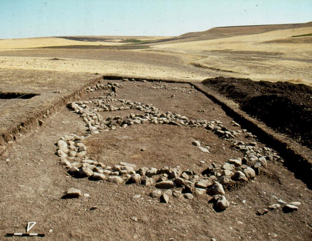 C14 der Archäologie