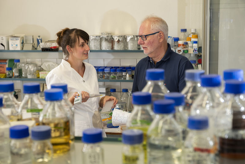 Dietrich H. Nies – here in the lab with Lucy Bütof – has been researching a gold-forming bacterium for years.